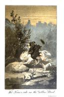 Seite 166