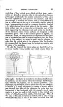 Seite 65