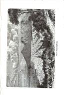 Seite 597