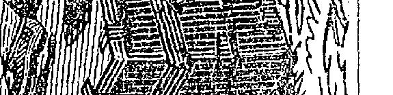 [ocr errors][ocr errors][ocr errors][subsumed][ocr errors][ocr errors][ocr errors][subsumed][ocr errors][ocr errors][subsumed][subsumed][ocr errors][ocr errors][ocr errors]